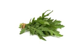 Verse kruiden / Rucola / Rucola fresca in mazzi / Emilia Romagna Italie / bosje ca 100gram