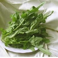 Bladgroente  | Catalogna corte barbina / Chicorei-achtige korte Barbina / Bitter smakende bladgroente / Italië, 250gram