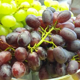 Druif /  pitloze blauwe druiven / Crimson Red Seedless  /Teelt: regulier - Italië / 500gram