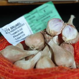 Sjalotjes   Echalot Gris   kleine sjalotjes  voor de stoof of inmaak / teelt: regulier-Frankrijk / 500gram