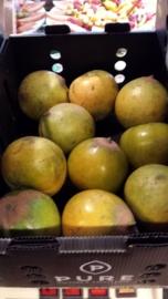 Lucuma zapote / verse vruchten / Inca Goud / Peru / doosje 1x1,5 kilo