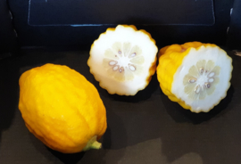 Etrog citroen (gele Sukade ) / Cedrat | Cidraat | Cedro Sucade / teelt: onbehandeld -Italie / 1 kilo