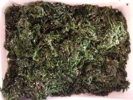 Zeewier / Gezouten zeewieren / Wilde zeesla / Biologisch-Bretagne  / bakje 100gram
