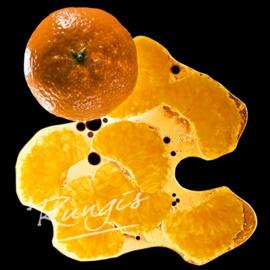 Mandarijnen Pureé | 100% fruit | Ponthier | zak 1000ml / t.h.t. 26-10-2021