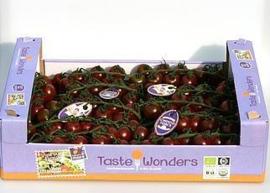 Chocotoms / trostomaatjes  / Nederland / teelt: Biologisch / 500gram