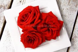 Rozen rood / Eetbare bloemen / Israel / 4 bakjes (ca. 20stuks)