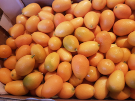Kumquat | Mini sinaasappel |  Teelt: regulier - Israel | 250gram
