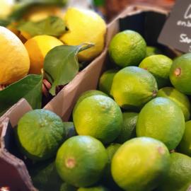 Limes | limoen | lemoen | Persian limes | teelt: bio Mexico | doos 2 kilo
