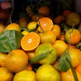 Mandarijn Clementine Marisol / met blad / teelt: regulier  / Spanje / 1 kilo (ca 10 stuks)