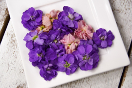 Violier /  Eetbare bloemen / Israel / 4 bakjes (ca. 60stuks)