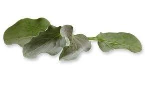 Oyster Leaves / Oester blaadjes / Op Bestelling / Bakje met 50 blaadjes