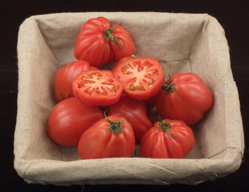 Tomaat / Coeur de Boeuf tomaten / Vleestomaat / Nederland / teelt: Bio-Demeter/ 1 kilo