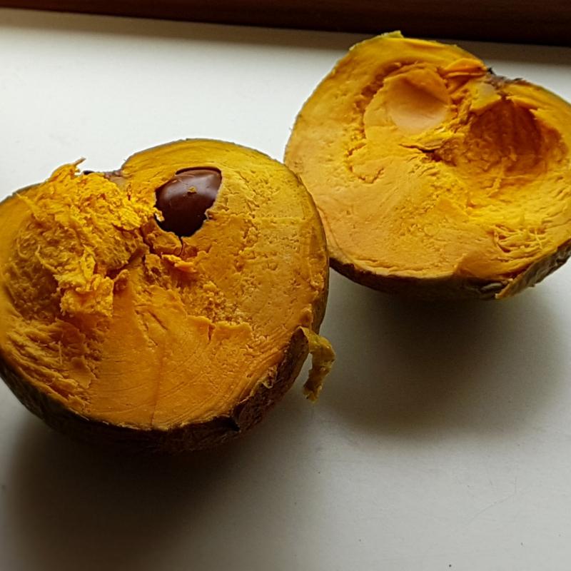 Lucuma  zapote / verse vruchten /  Inca Goud /Peru / 3 stuks