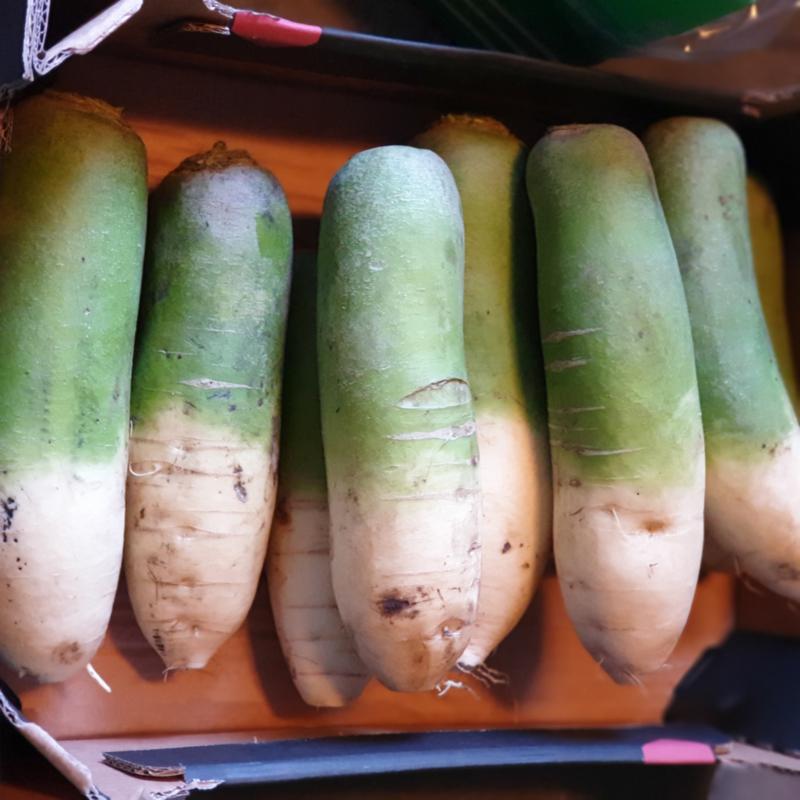 GREEN MEAT REGULIER-FRANKRIJK | 5KILO