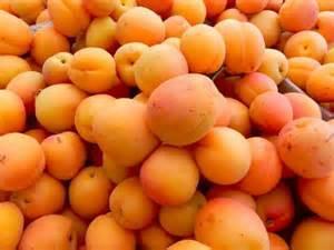 Mirlo Naranja abrikozen | varieteit: Mirlo Naranja  / Teelt: regulier - Spanje / doos 5 kg