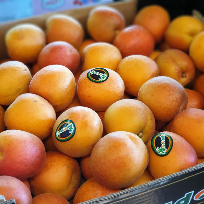 Flopria abrikozen | Teelt: regulier - Spanje | 1 kilo