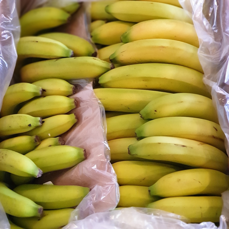 BANANEN | SOORT BANAAN: CAVENDISH | MERK: DOLE | COSTA RICA | GROEN TOT HALF RIJP | doos 18 kg