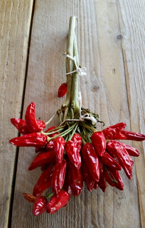 Peperoncino picante in mazzi / Gedroogde pepertjes / Chilipepertjes in bosjes / Chili Calabrese / Calabrese chilipepers / regio Emilia Romagna-Italië / 50gram (ca 8-10 pepertjes)