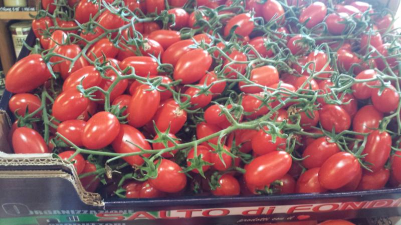 Tomaat / Pomodori Datterino / Dadelvormige tomaatjes / Sicilië-Italië / 500gram -  levering vanaf  donderdag 26 september