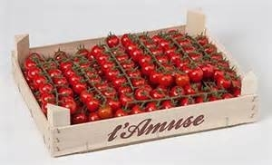 Cherry Tros l'Amuse tomaten / teelt regulier - Nederland / kistje 3 kilo