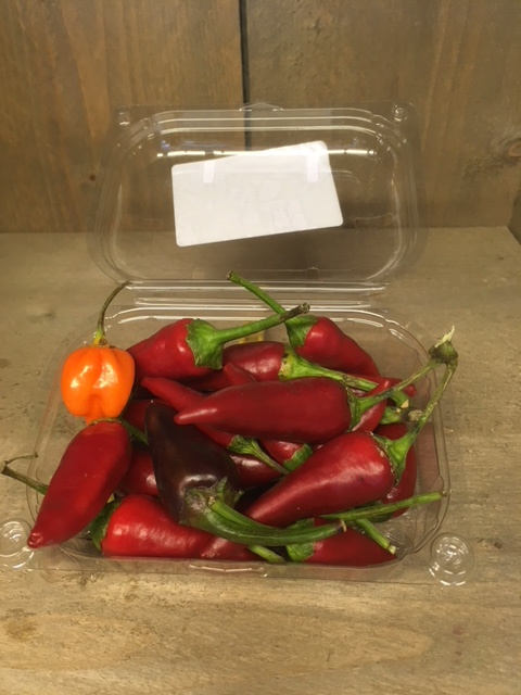 Peperoncino picante / verse rode Pepertjes / Italiaanse peperoncini chilipepertjes  / Italië / bakje ca 150 gram (ca 20 stuks)