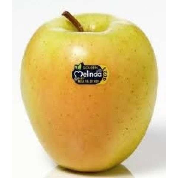 Golden Delicious appels/ Mele Golden delicious / Italië / Zuid-Tirol / Val Venosta / teelt:traditioneel / 1kilo