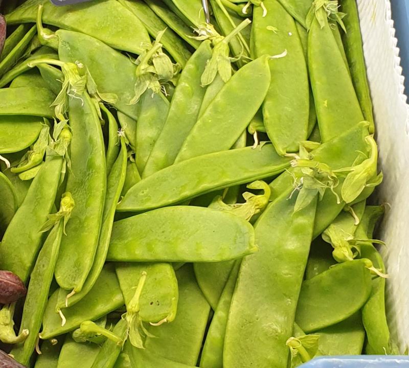 PEULEN | VERSE PEULTJES | TEELT REGULIER  - KENYA| doos 2 kilo