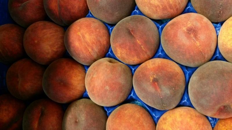 Perzik  met geel vruchtvlees / Pesche gialle / AA  / Emilia Romagna - Italie / 5 stuks  - levering vanaf  donderdag 26 september