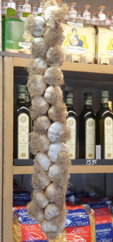 Knoflook rood | aglio rosso di Sulmona  | Oogst 2021 | 1 streng ca 1,6 kg ( ca 24 bollen) met gratis haak