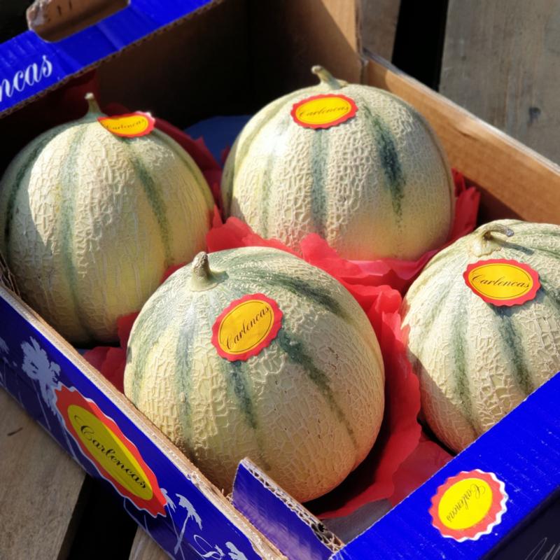 Meloen extra / Meloni Charentais / Rijp geplukt, zoet / Oranje vruchtvlees / Guadaloup \ 1 stuks (ca 1200gram)