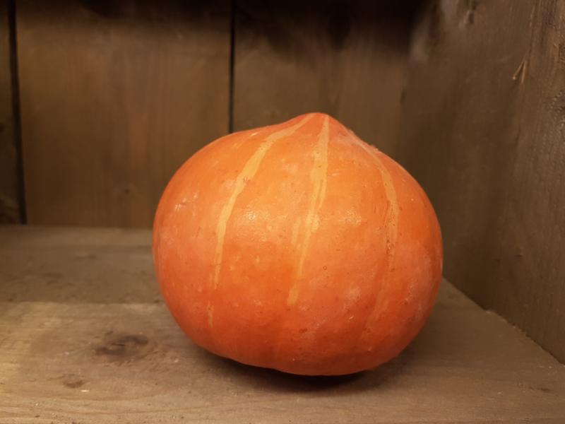 POMPOEN ORANJE HOKKAIDO | POTIMARRON POMPOENEN| TEELT: BIO Demeter-Nederland| 1 STUKS ca. 1 kg
