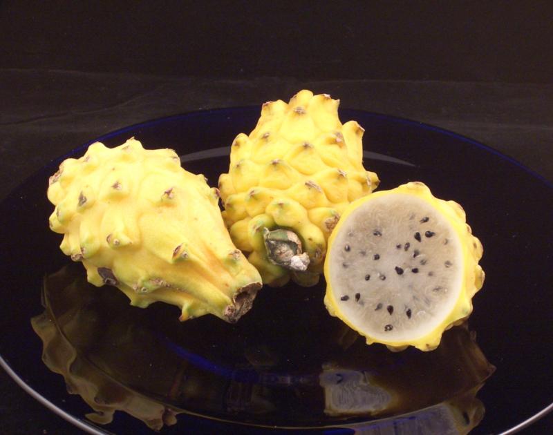 Pitahaya / Pitaya | Wit vruchtvlees met gele schil / Ecuador / Zoet  / 1stuks (grote maat, ca 350gram)