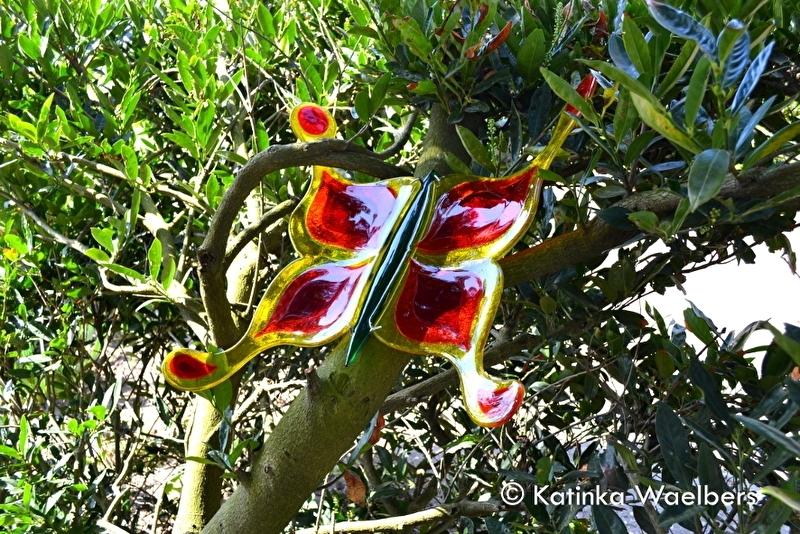 Reuze vlinder