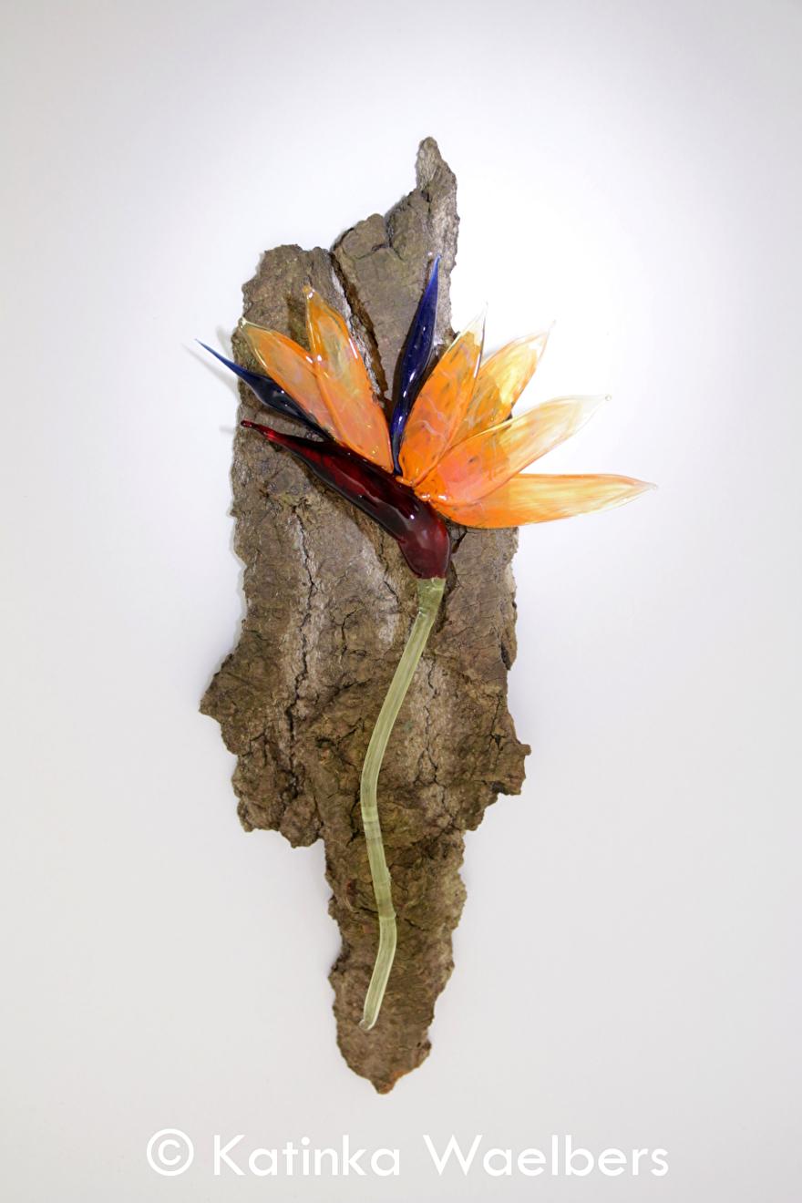 Paradijsvogelbloem glas glaskunst Katinka Waelbers