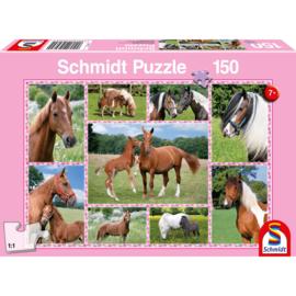999 Games Legpuzzel Prachtige Paarden 150 stukjes