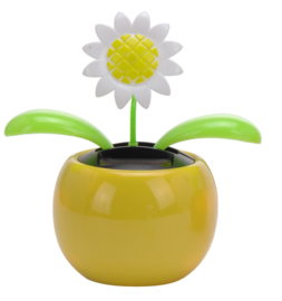 Tender Toys Solarbloem Margriet 10 cm