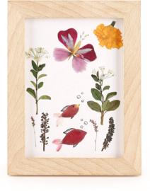 Kikkerland Maak je eigen herbariumlijst 13 x 17 cm hout