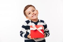 Puzzelabonnement  Halfjaar voor 2  jarigen