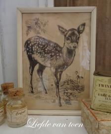 Bambi lijstje VERKOCHT