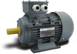 OMT2-IE1 71G2 0,55kW (3000rpm) 230/400V 50Hz B3/B5/B35
