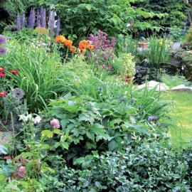 Eurom Sprinkler Tripod tuinsproeier