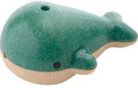 Fluitje walvis