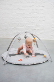 Babygym Wasbeer