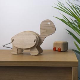Dieren lamp Schildpad