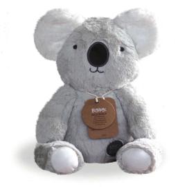 Knuffel Koala