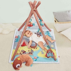 Tipi Activity gym