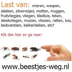 Ga naar www.beestjes-weg.nl