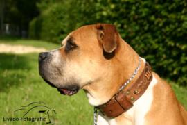 Leren hondenhalsband: The DJ!