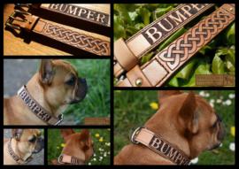 Meerdaagse cursus hondenhalsband (vrij ontwerp)