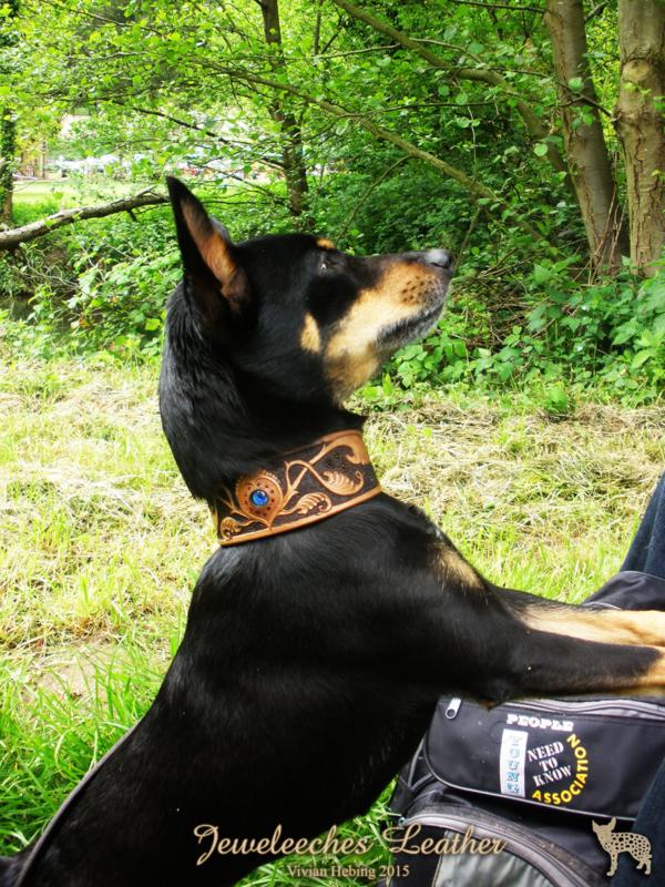 vervolgcursus leerbewerking: rijkelijk bewerkt hondenhalsbandje